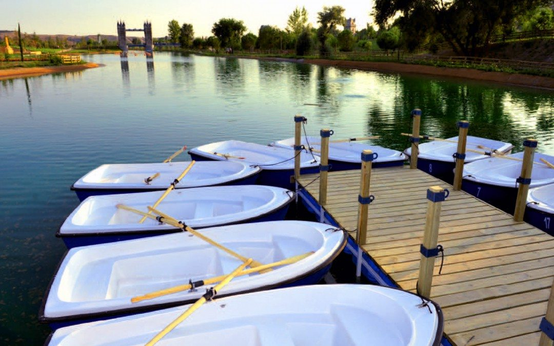 Barcas de Remo